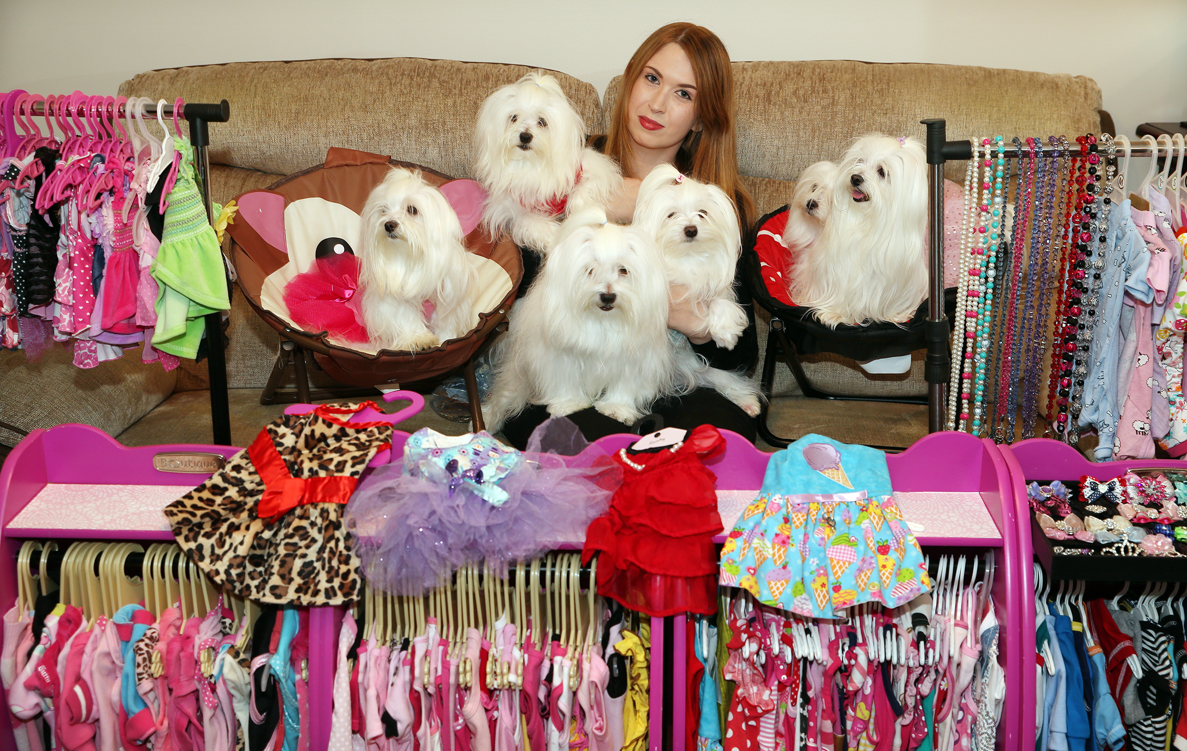 Fiona Gordon with her seven Maltese dogs and their giant wardrobe