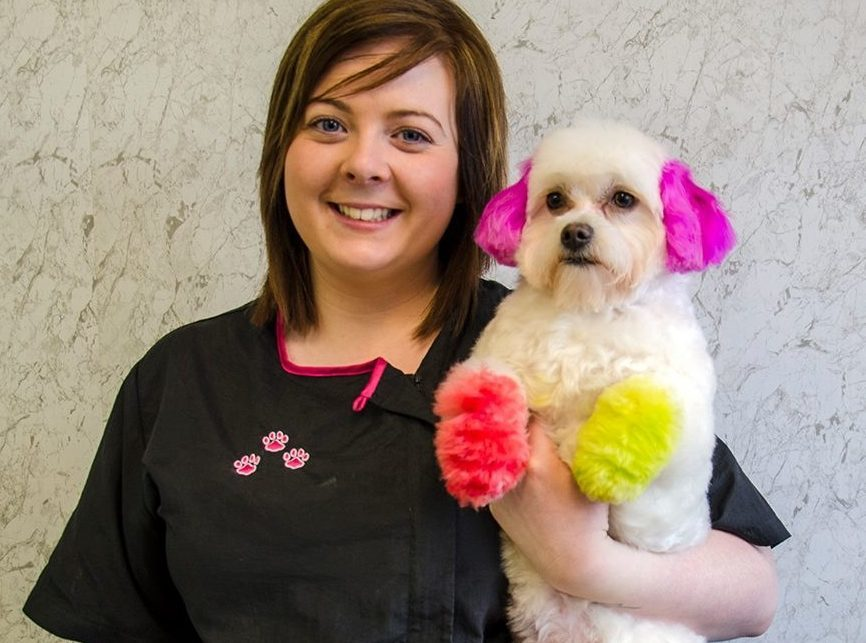 Danielle Murphy, who works in her mother's dog grooming salon (Pampers Dog Grooming)