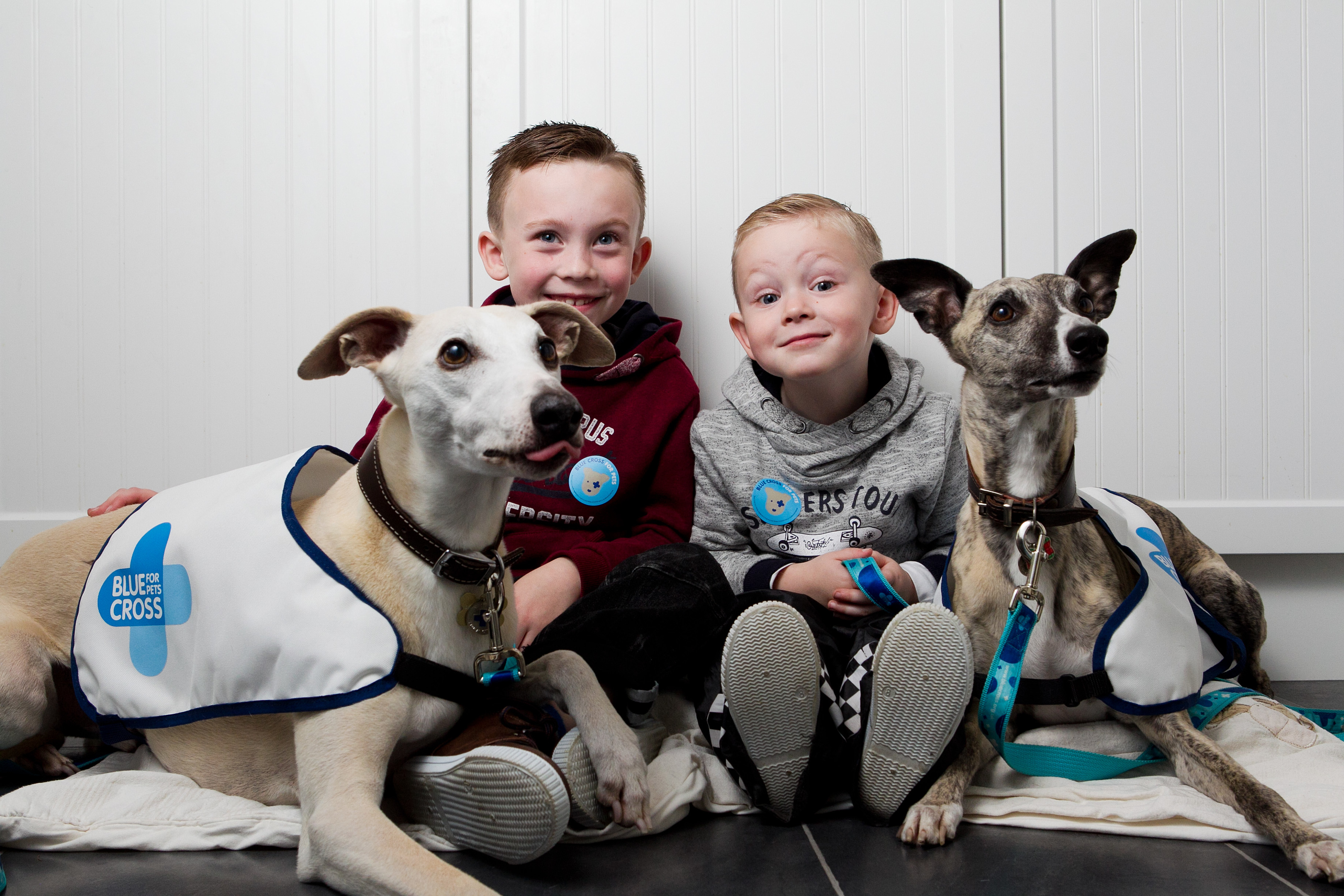 Robin and Logan with the dogs (Andrew Cawley / DC Thomson)