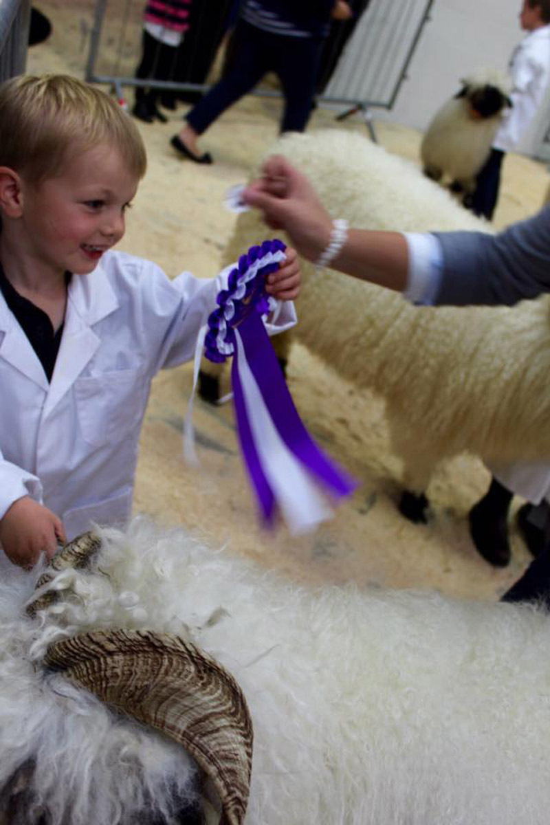 At the age of just four Bertie Duncan is shepherding long-haired sheep on his parents' farm in Dumfriesshire