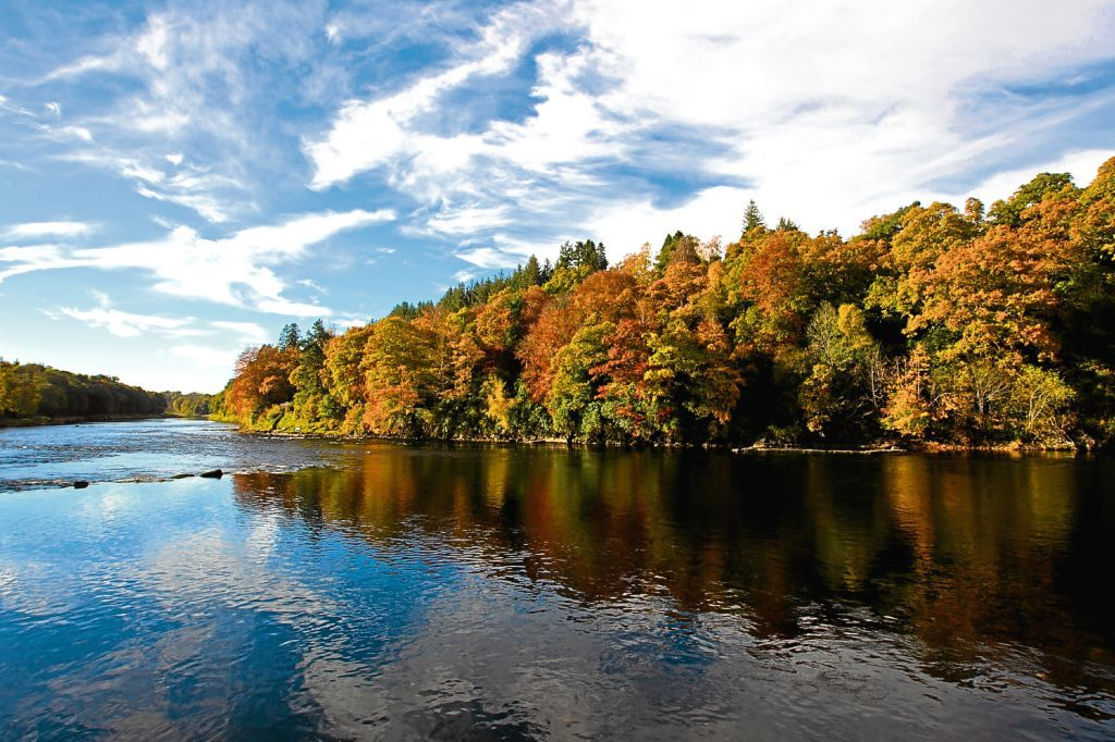 River Tay, near Scone (Andrew Cawley / DC Thomson)