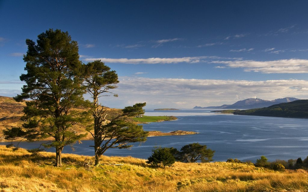 The Kyles of Bute (Getty Images)