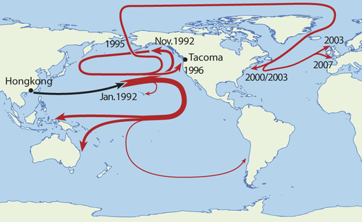 Route taken by the Friendly Floatees initially lost in the Pacific Ocean in 1992. (NordNordWest via Wikimedia Commons)