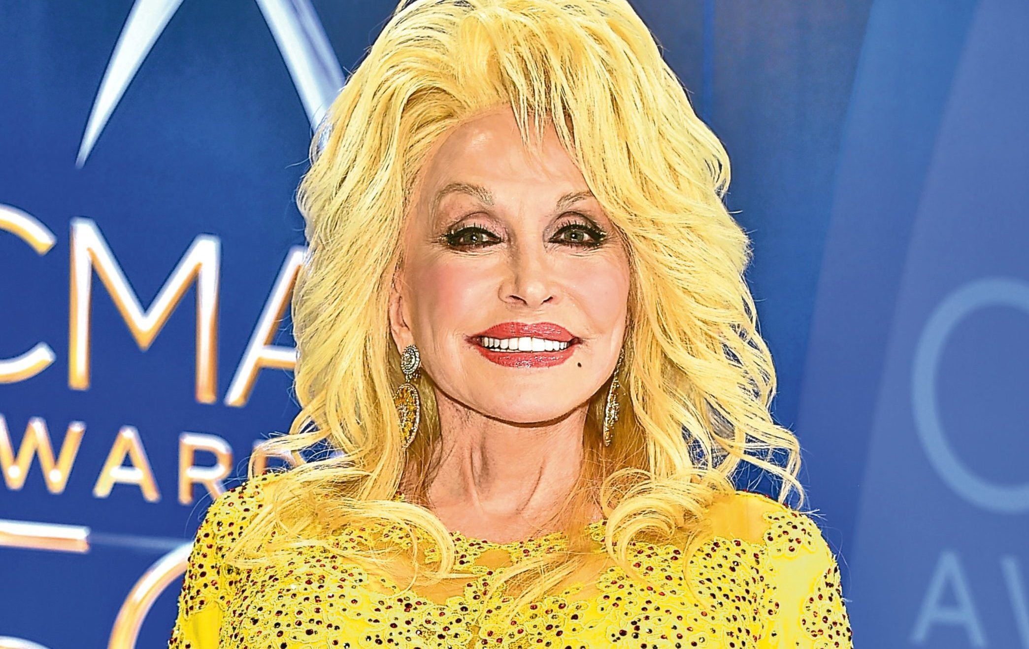 Dolly Parton receives the Willie Nelson Lifetime Achievement Award  (Michael Loccisano/Getty Images)