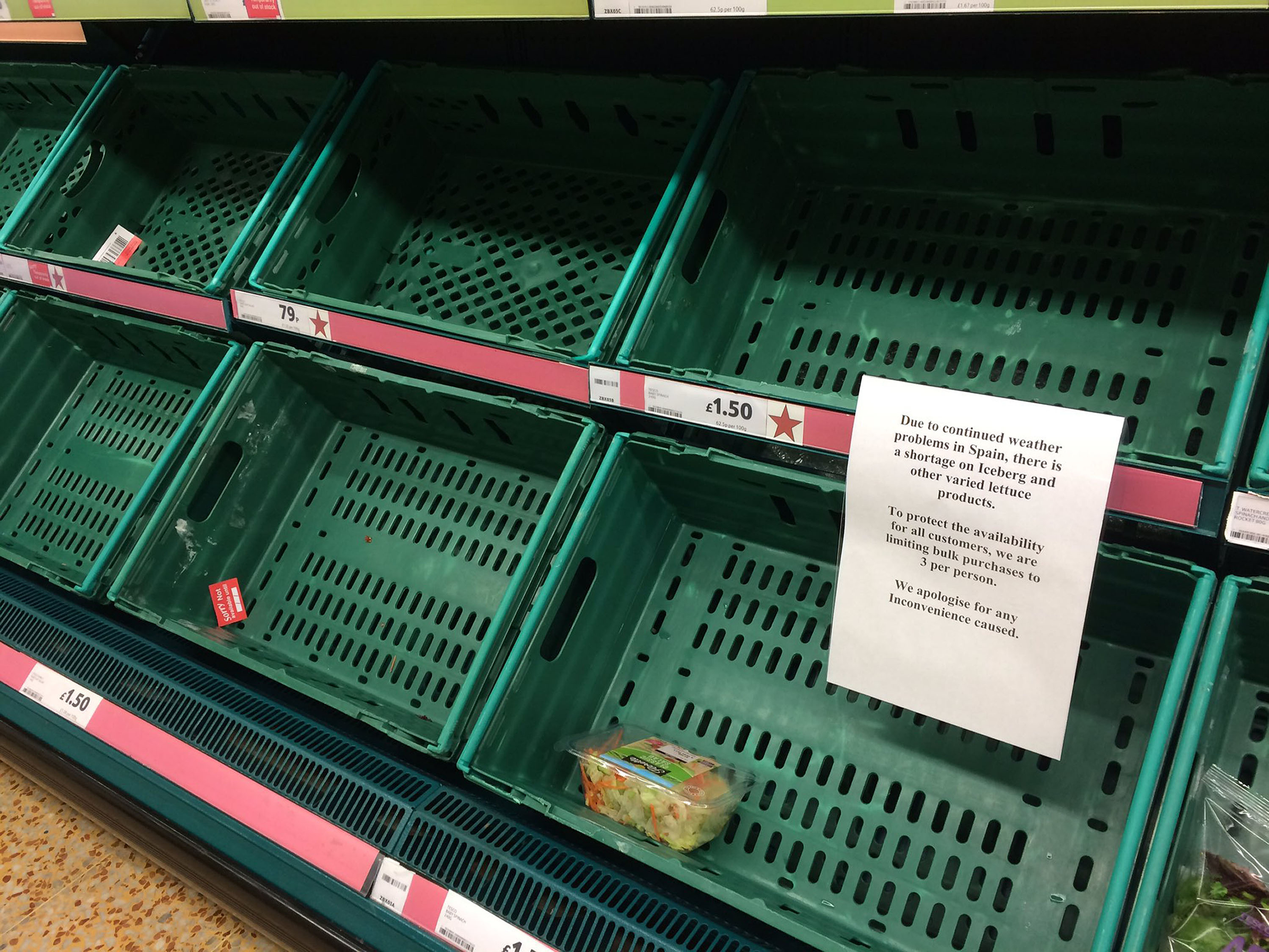 "Empty shelves at a Tesco store as lettuce became the latest staple to fall victim to the European vegetable shortage ""crisis"". (@RobGregOnRetail/PA Wire)"