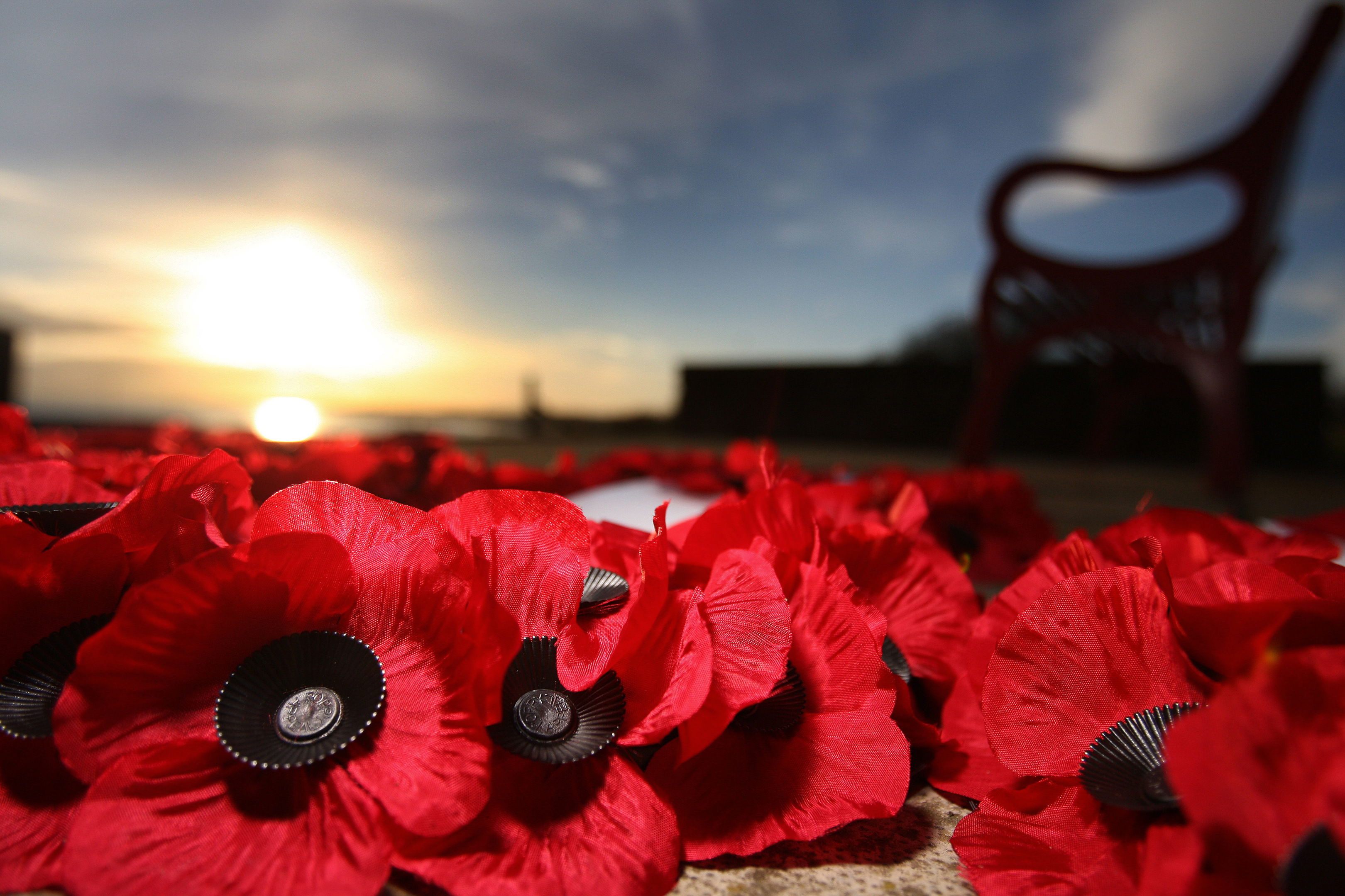 A campaign by armed forces charity Poppyscotland highlighted the issue