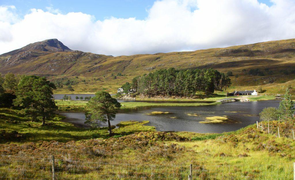 Looking towards Affric Lodge Loch Affric Glen Affric Inverness-shire Scottish Highlands Highland Scotland UK