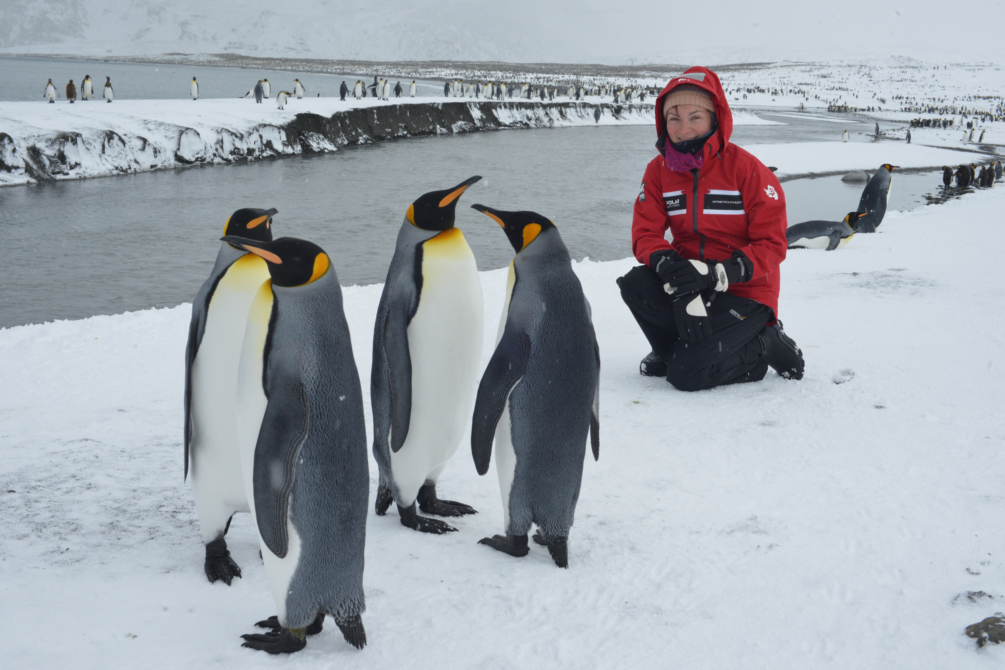 Lorraine Kelly with some penguins. (Steve Smith)