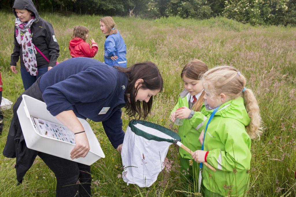 Children from Gartocharn Primary School bug hunting at the RSPB Loch Lomond Visitor hub launch, 20 June 2016