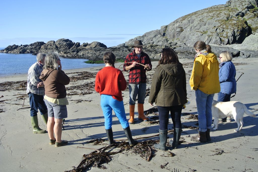 Seaweed Forag