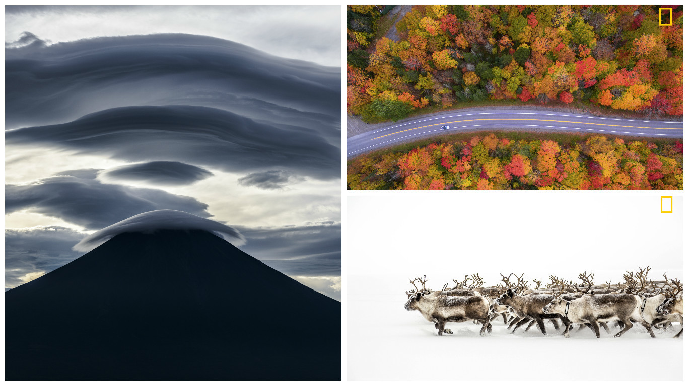 Entries for the competition by Takashi (left), Manish Mamtani (top right) and Adam Cunningham-White (National Geographic Photographer of the Year Contest)