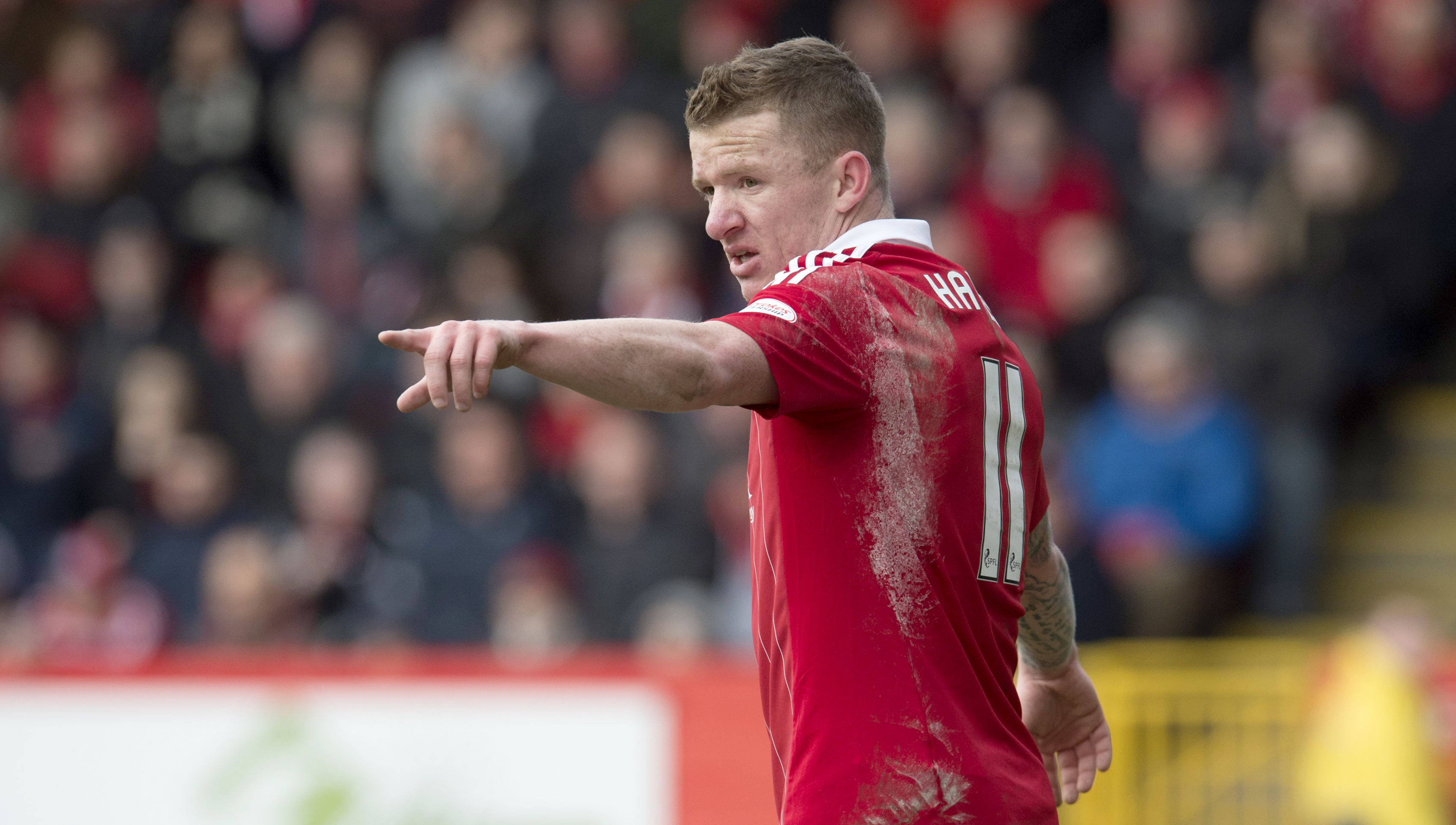 Jonny Hayes in action for Aberdeen (SNS Group)