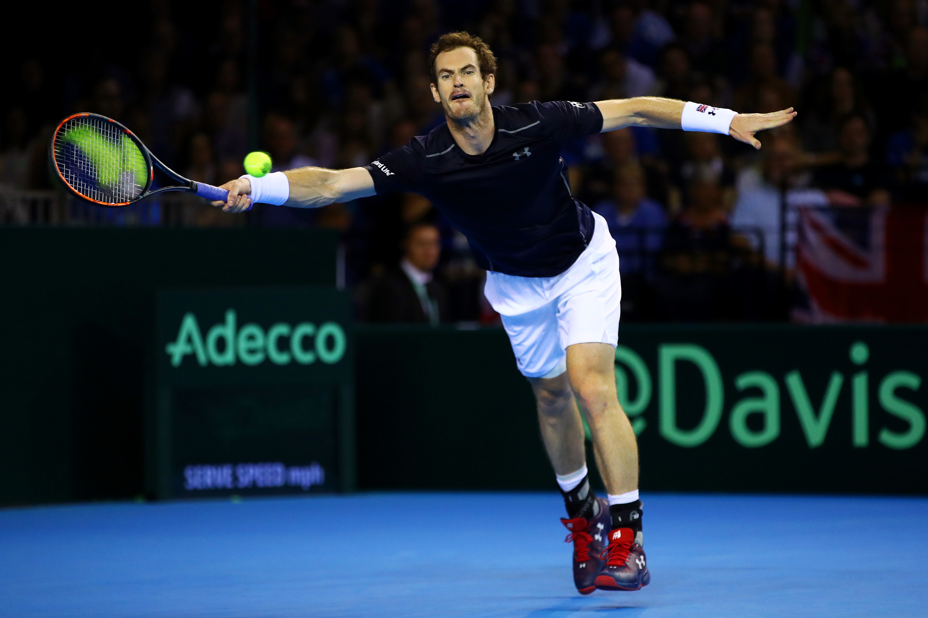 Andy Murray (Clive Brunskill/Getty Images)