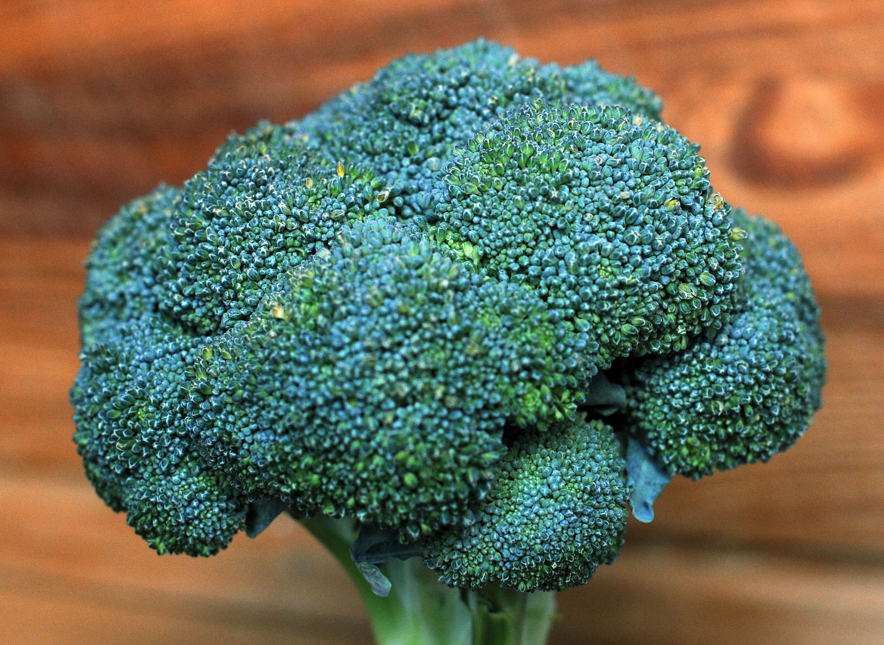 Broccoli has undergone a dramatic image transformation to be crowned Britain's favourite vegetable in a survey from Diabetes UK. (Nick Ansell/PA Wire)