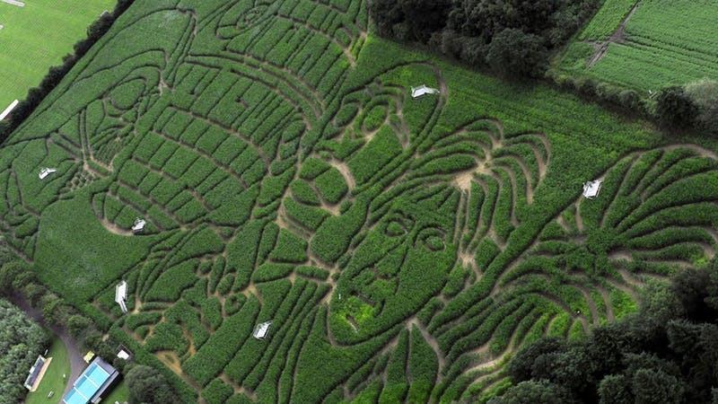 Star Wars maize maze (PA)