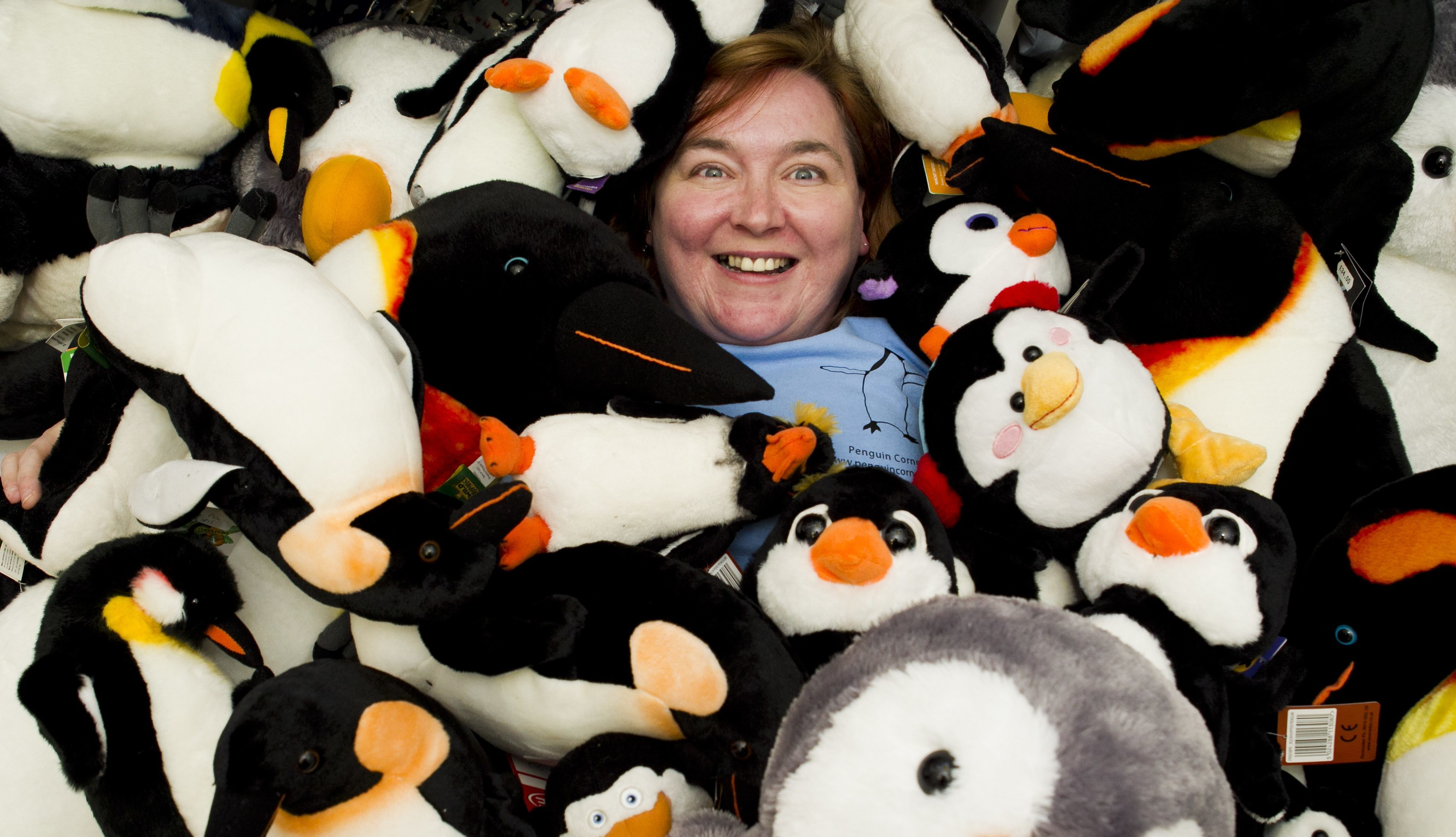 Gillian Sloan sells penguins in her shop (Andrew Cawley / DC Thomson)