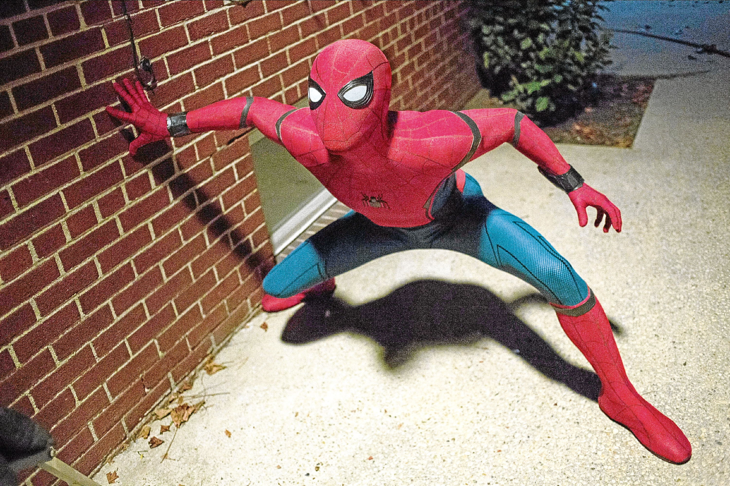 Dominic's son Tom Holland plays Spider-Man in the latest Marvel film (Allstar/MARVEL STUDIOS/COLUMBIA PICTURES)