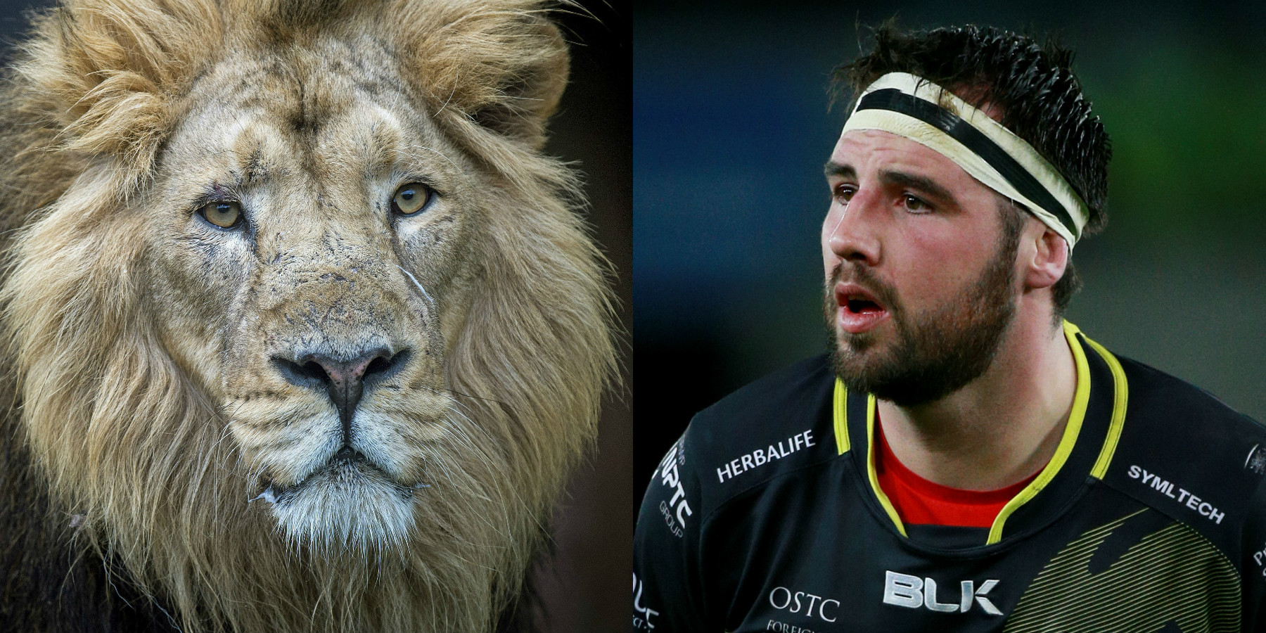 Lion and Scott Baldwin (Victoria Jones/David Davies/PA)