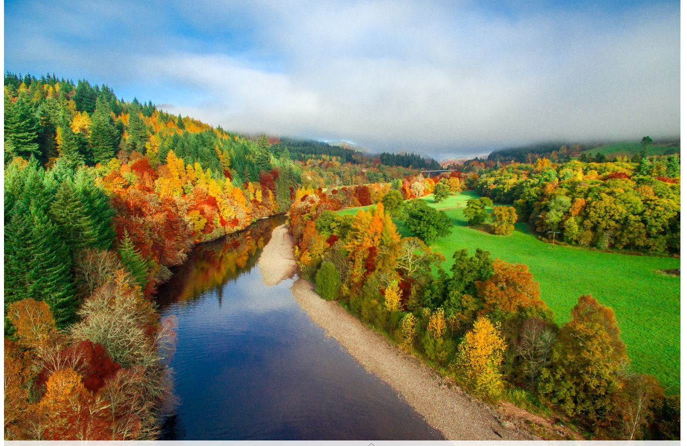 The beautiful golden colours of a Scottish autumn – especially in Perthshire – have tourists from all over the world booking up to see our scenery (Liam Anderstrom)