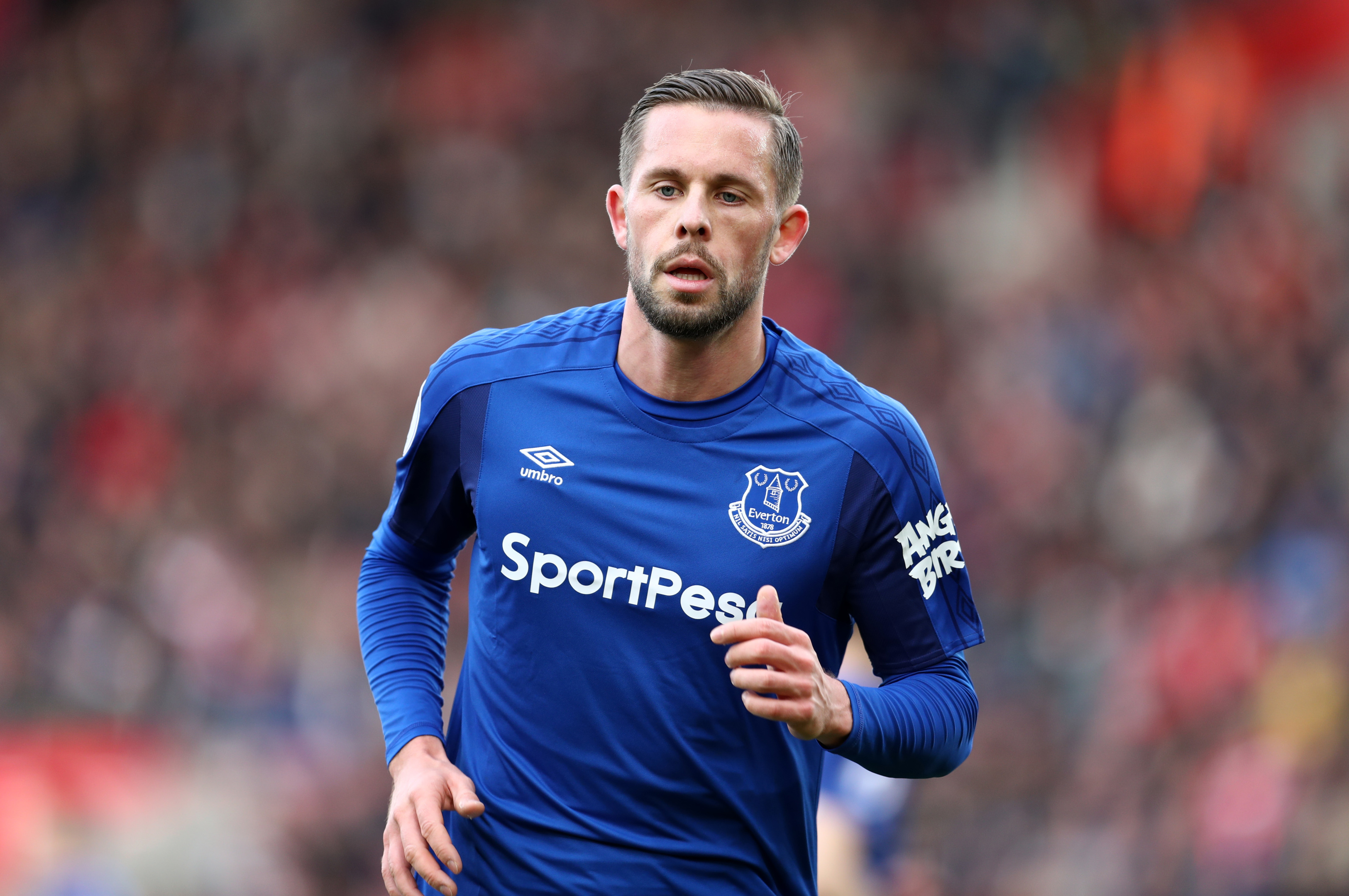 Gylfi Sigurdsson of Everton (Catherine Ivill/Getty Images)