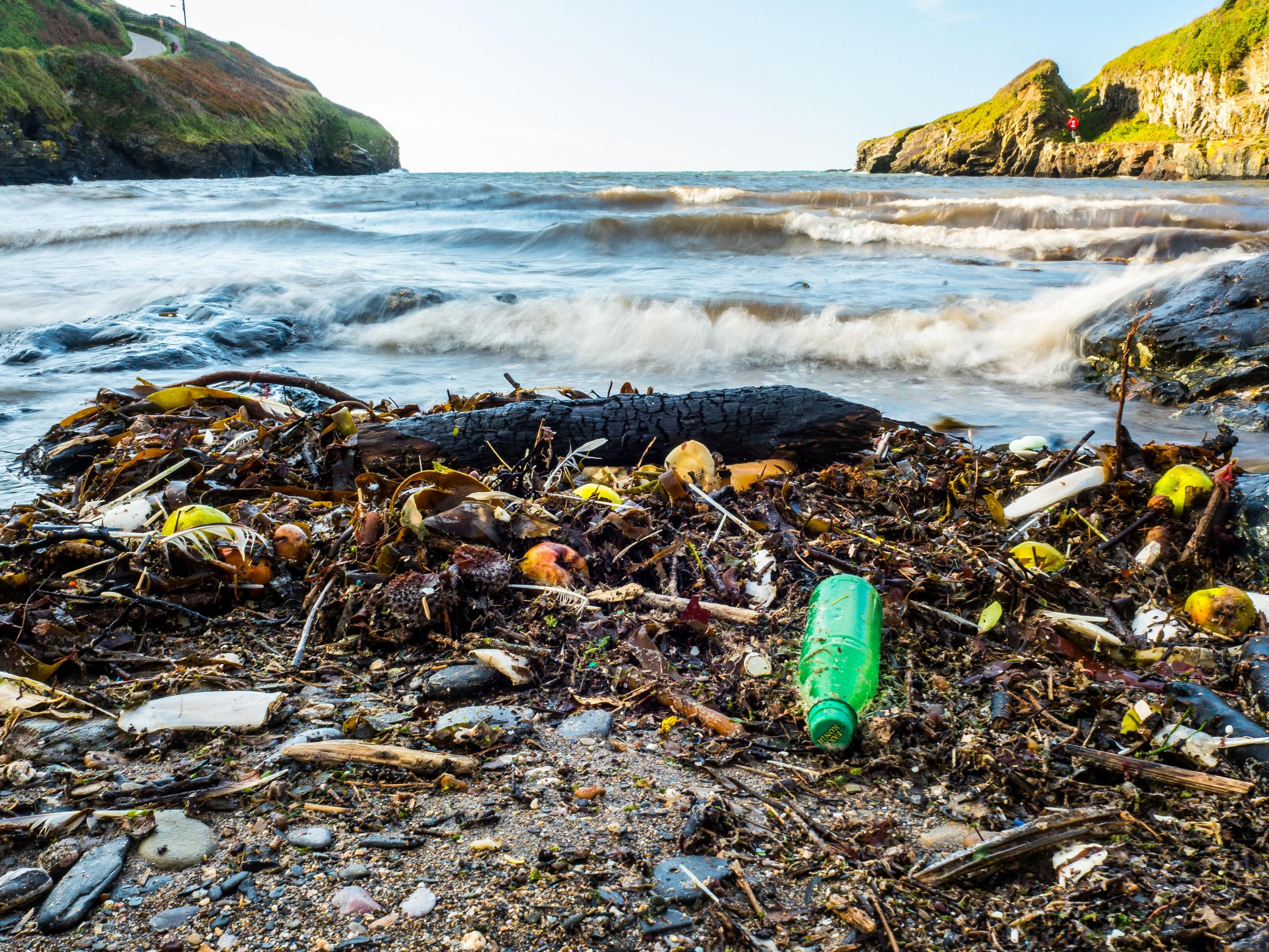 Plastics are killing marine life (Nigel_Wallace/Getty Images)