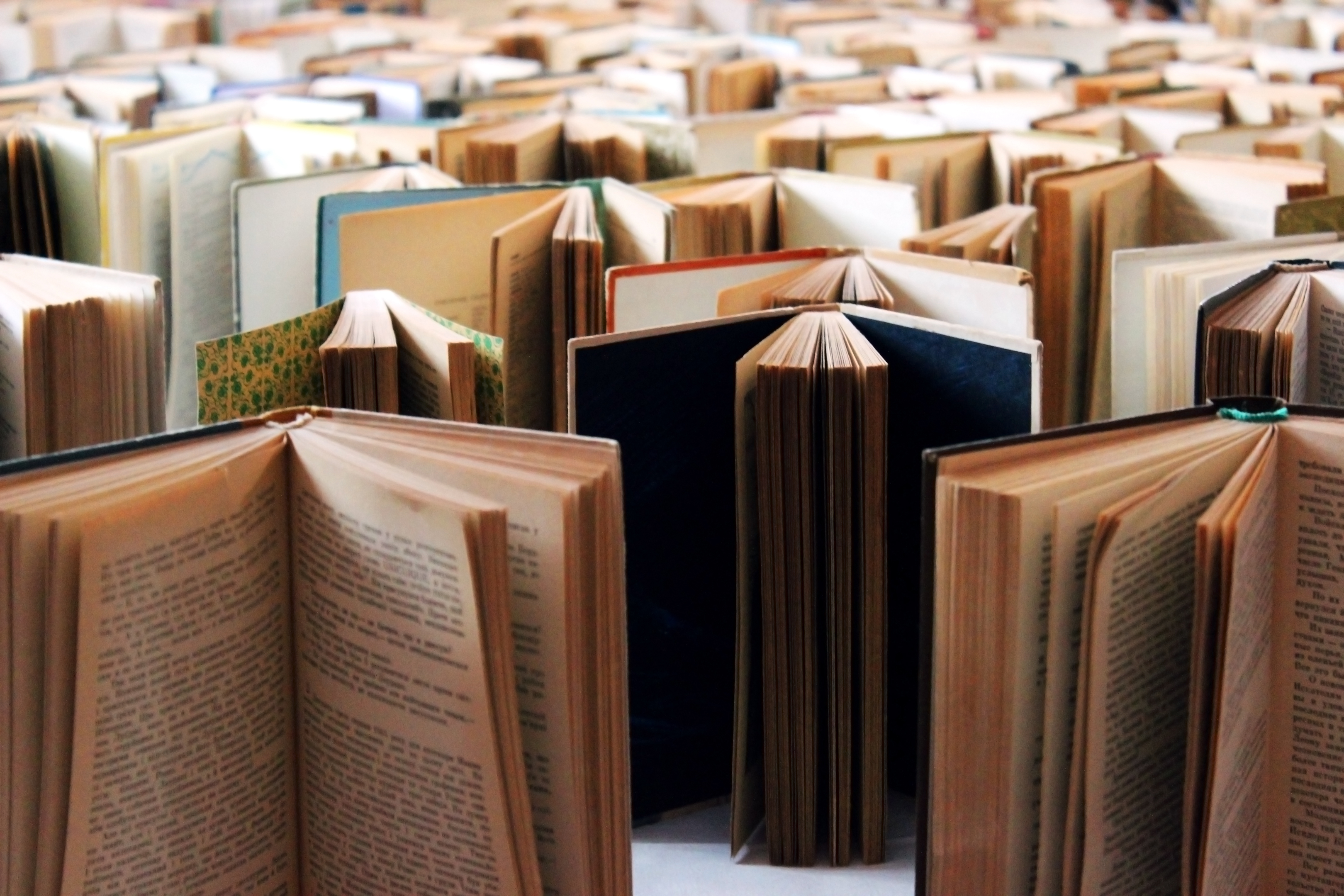 Sales of crime and thriller books have increased by 19% since 2015 (Getty Images/iStock)