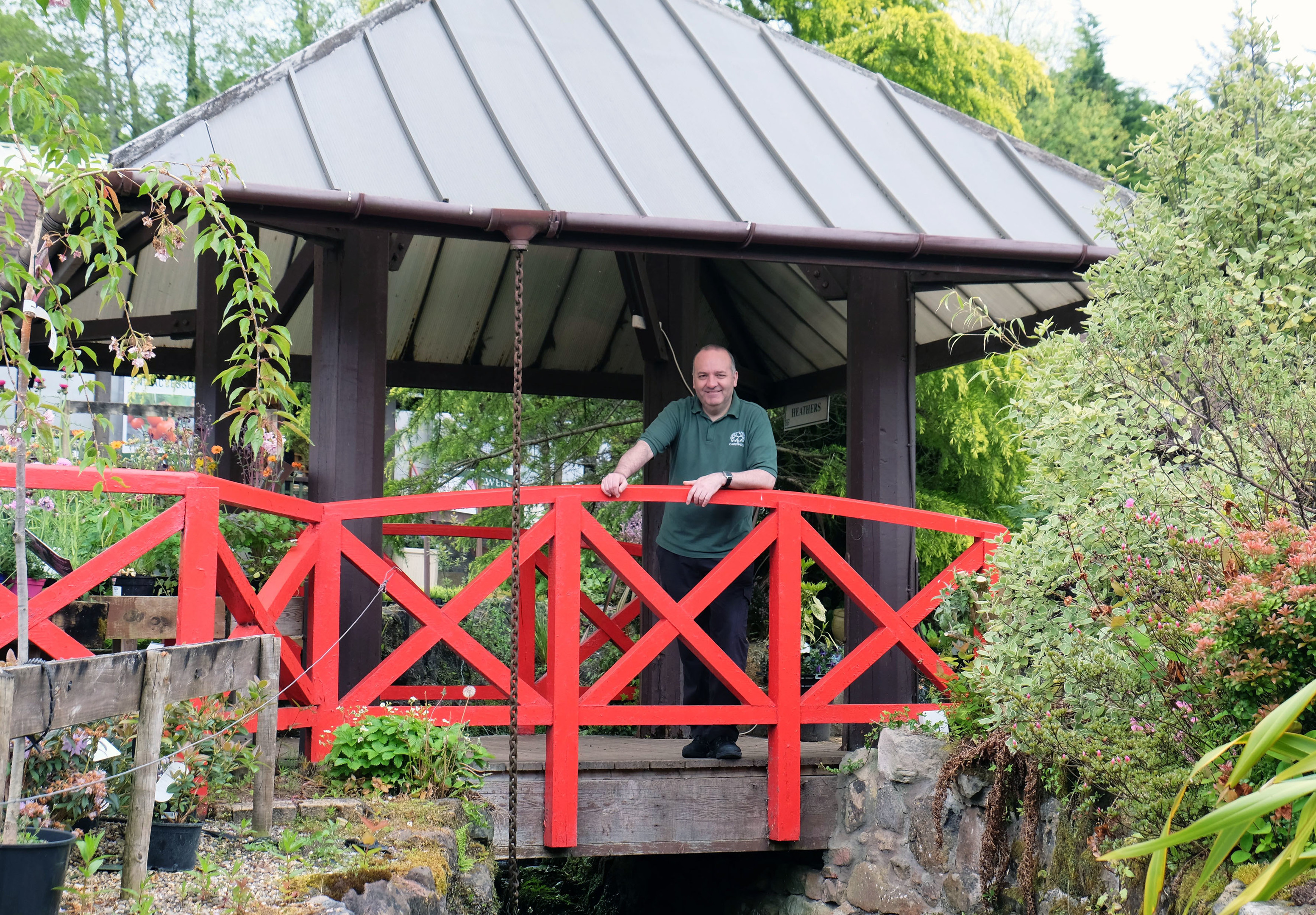 Cardwell's retail general manager, Paul Carmichael at the bridge and pagoda-style shelter that came from the Glasgow Garden Festival and is now at Cardwell Garden Centre