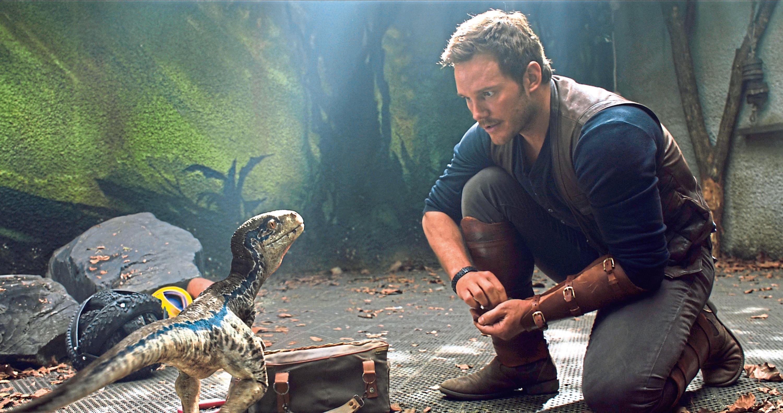 Chris Pratt in the new film (Allstar/UNIVERSAL PICTURES)
