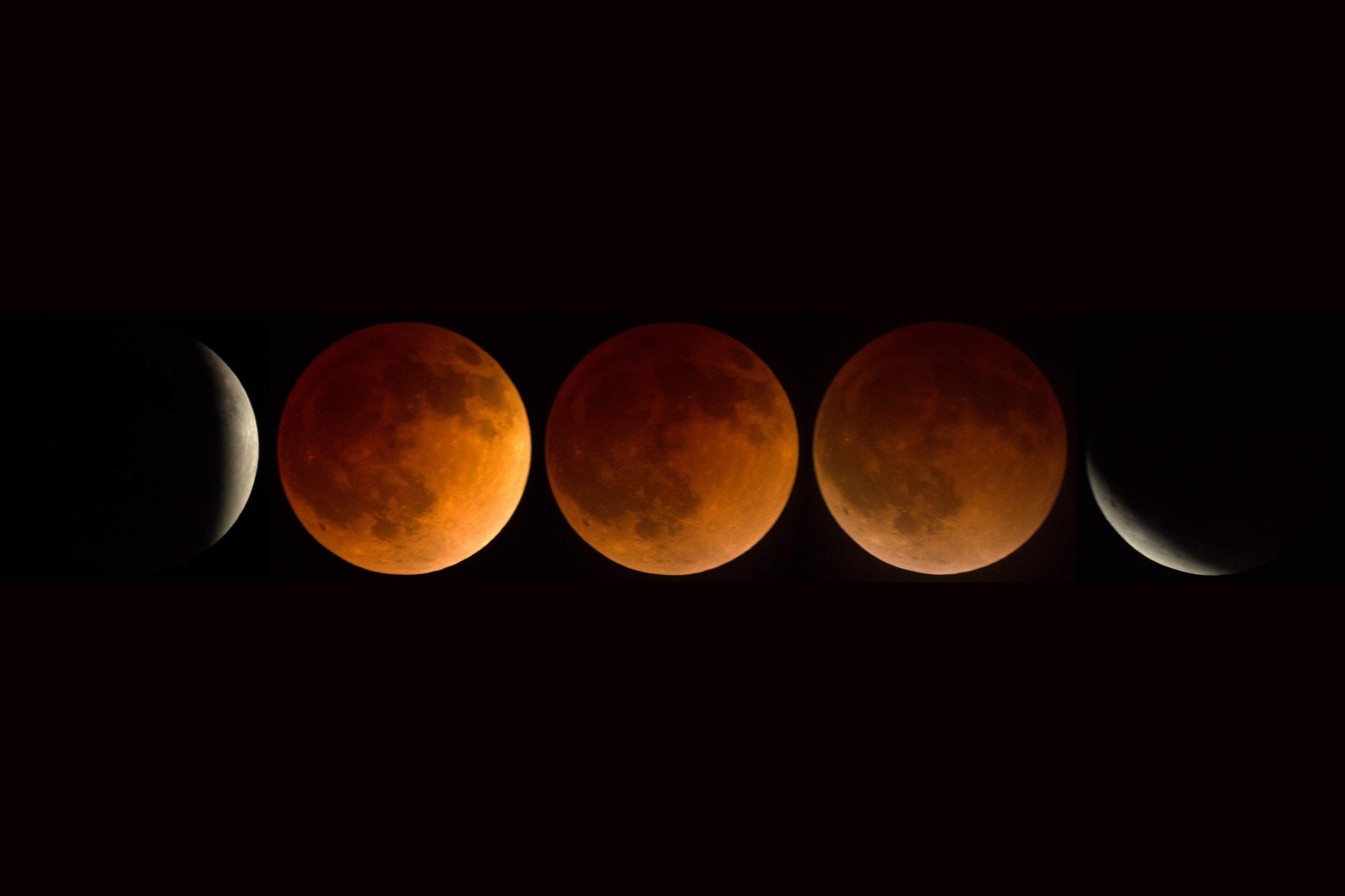 The blood moon will be brightening our skies tonight. (David Hoffmann/Getty)