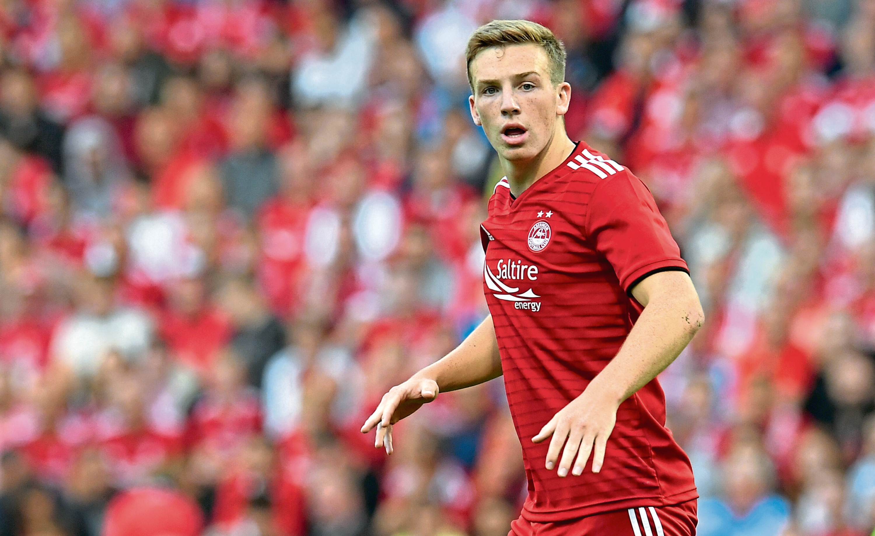 Lewis Ferguson in action for Aberdeen (SNS Group)