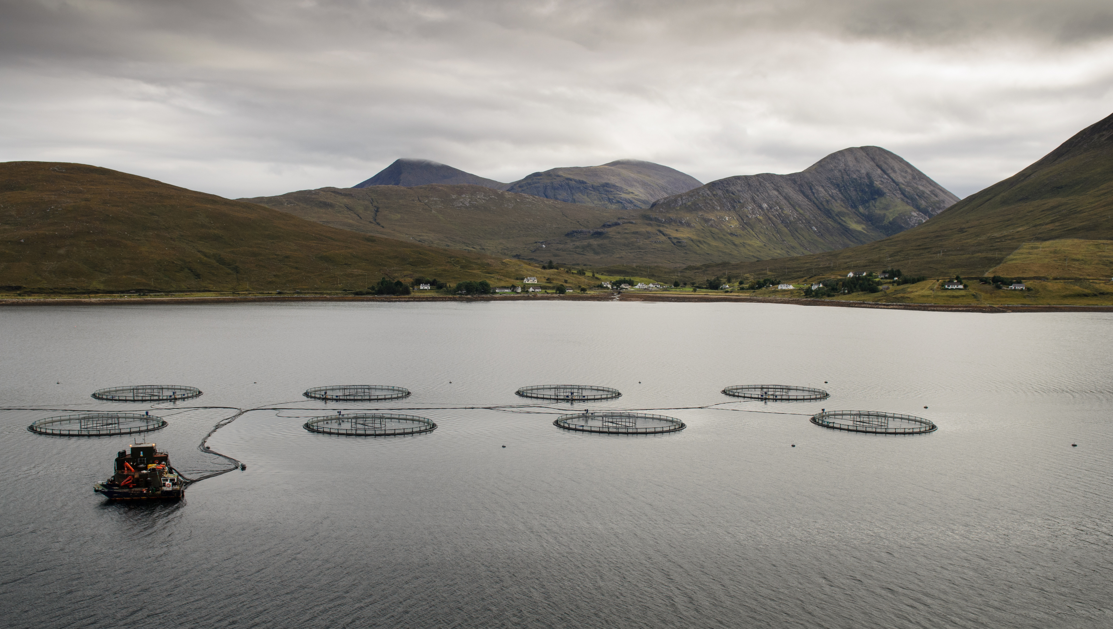 Fish farming is one of Scotland's most lucrative industries, but its environmental impact is coming under fire.