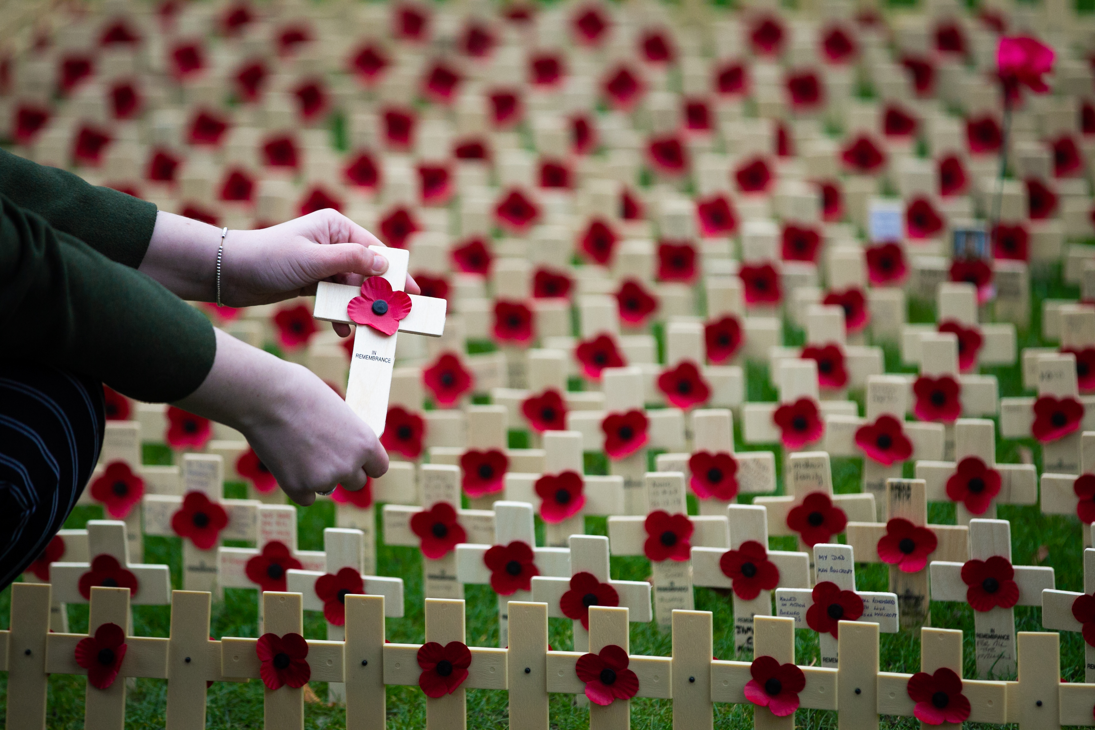 Remembrance Garden in Princes Street Gardens in Edinburgh (Andrew Cawley / DC Thomson)