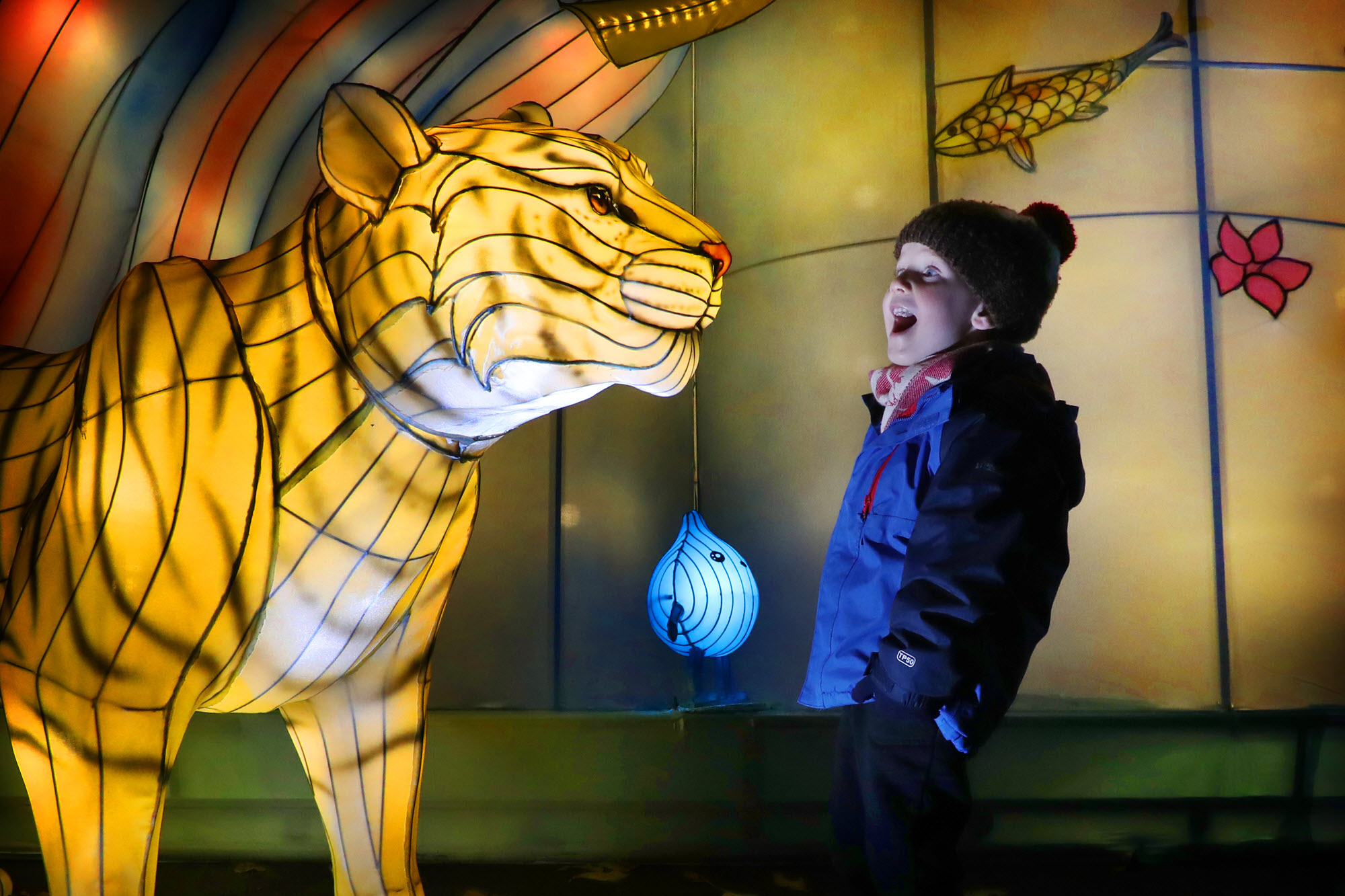 Young visitor Magnus McMahon at The Giant Lanterns of China, a trail at the zoo featuring hundreds of gigantic lanterns inspired by mythical creatures (RZSS Edinburgh Zoo/PA Wire)