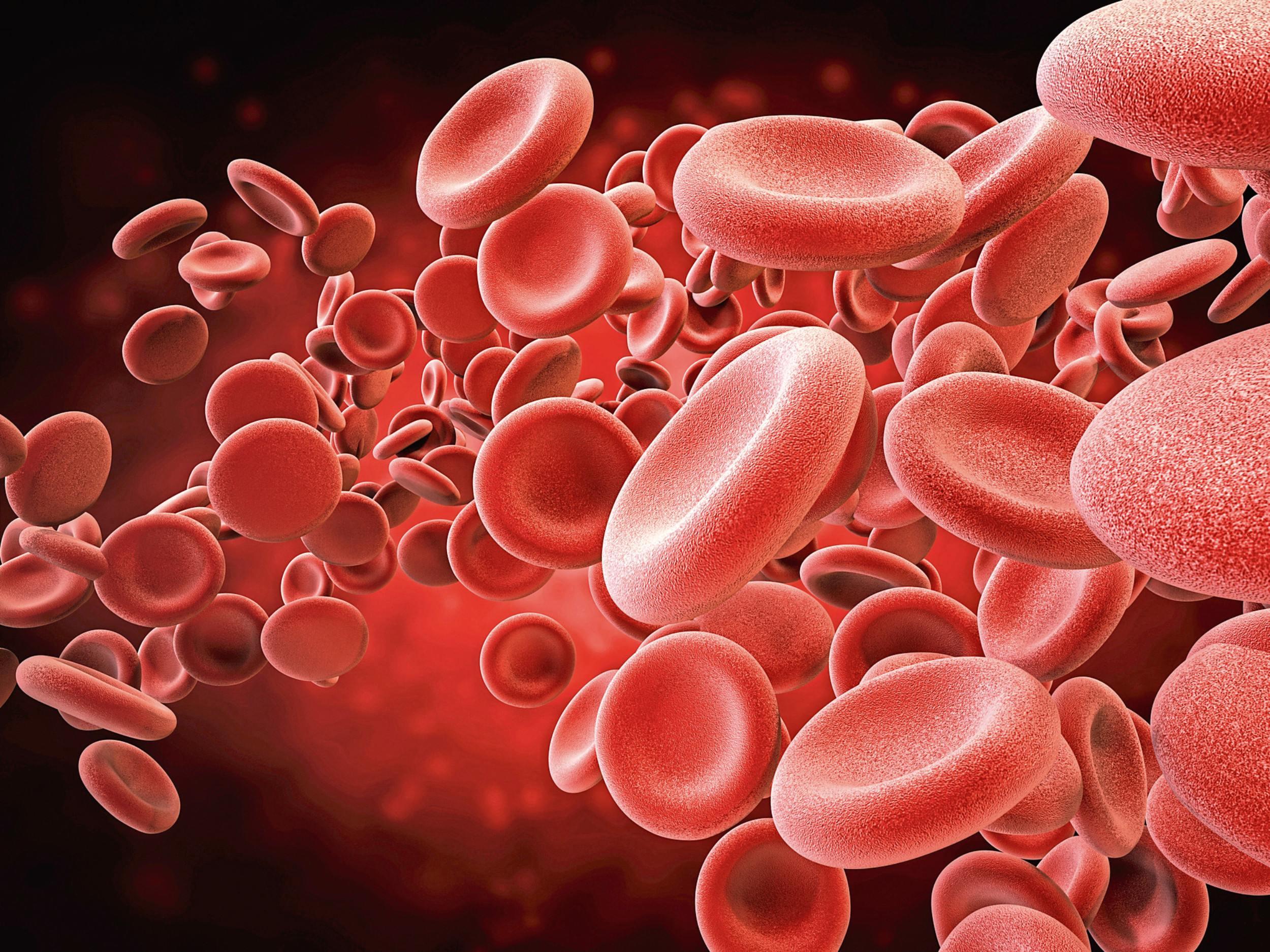 3d rendering red blood cells in vein.