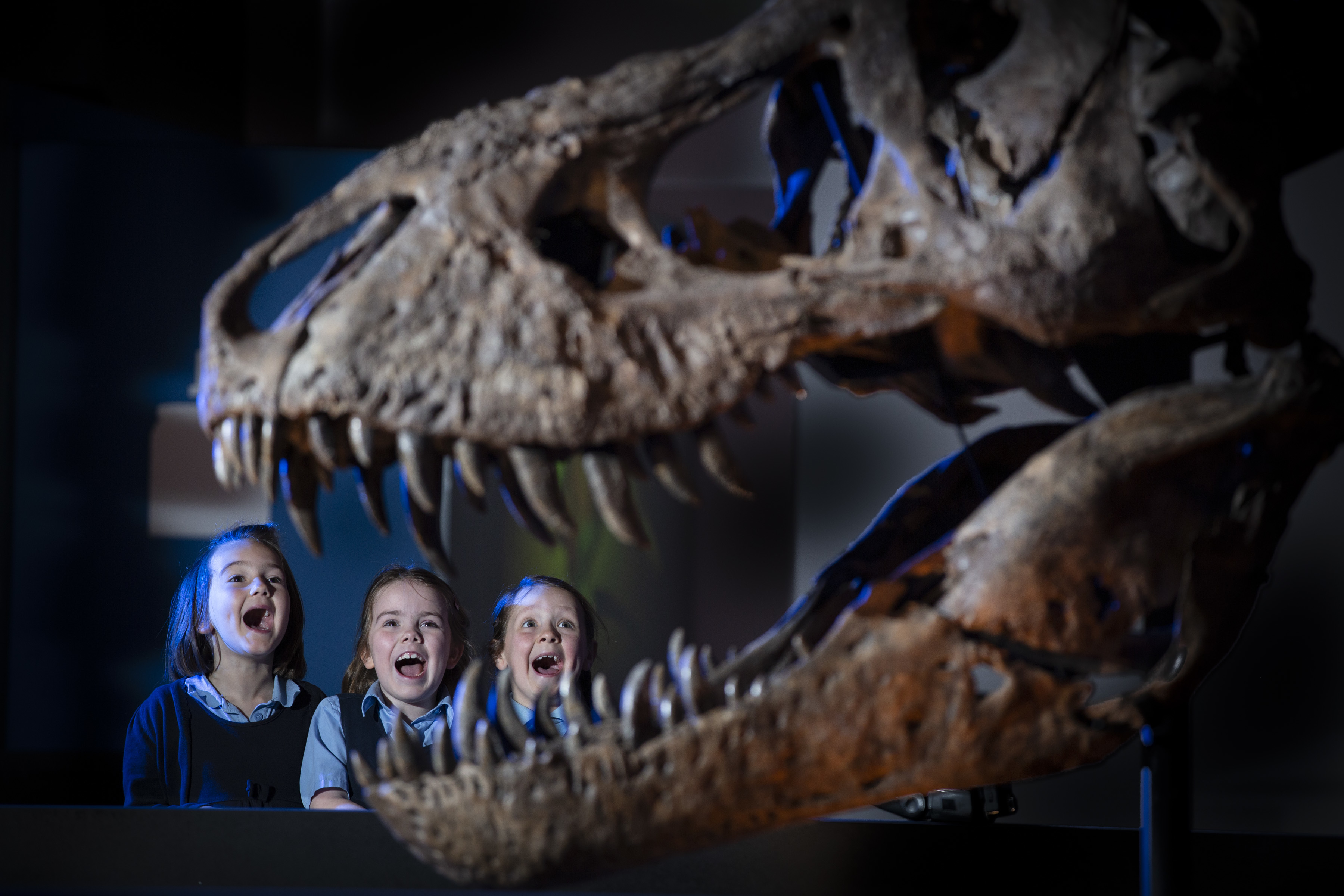 (left to right) Clara Duncanson, Zara Graham and Agnes Cunningham Wheeldon from Broomhill Primary School meeting Trix the T.rex