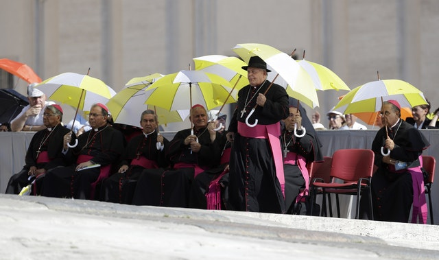 Bishops shelter from the sun as they wait for the start of Pope Francis' weekly general audience in St Peter's Square