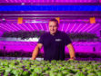 Invergowrie Intelligent Growth Sulutions LTD have created a vertcle farming indoors in Perthshire.