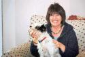 Author Jill Murphy
