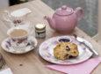 The Ditsy Teacup