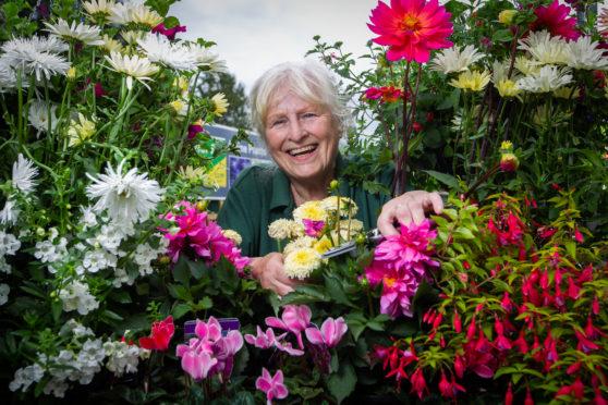 Sheila McEwan, who is still working after retirement at Dobbies Garden Centre