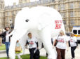 Members of STOP HS2 with their 10 foot high inflatable white elephant outside parliament, London, as both the Secretary of State for Transport Philip Hammond and the staff of HS2 Ltd give evidence to the Transport Select Committee inquiry of HS2, the proposed new high speed rail link.