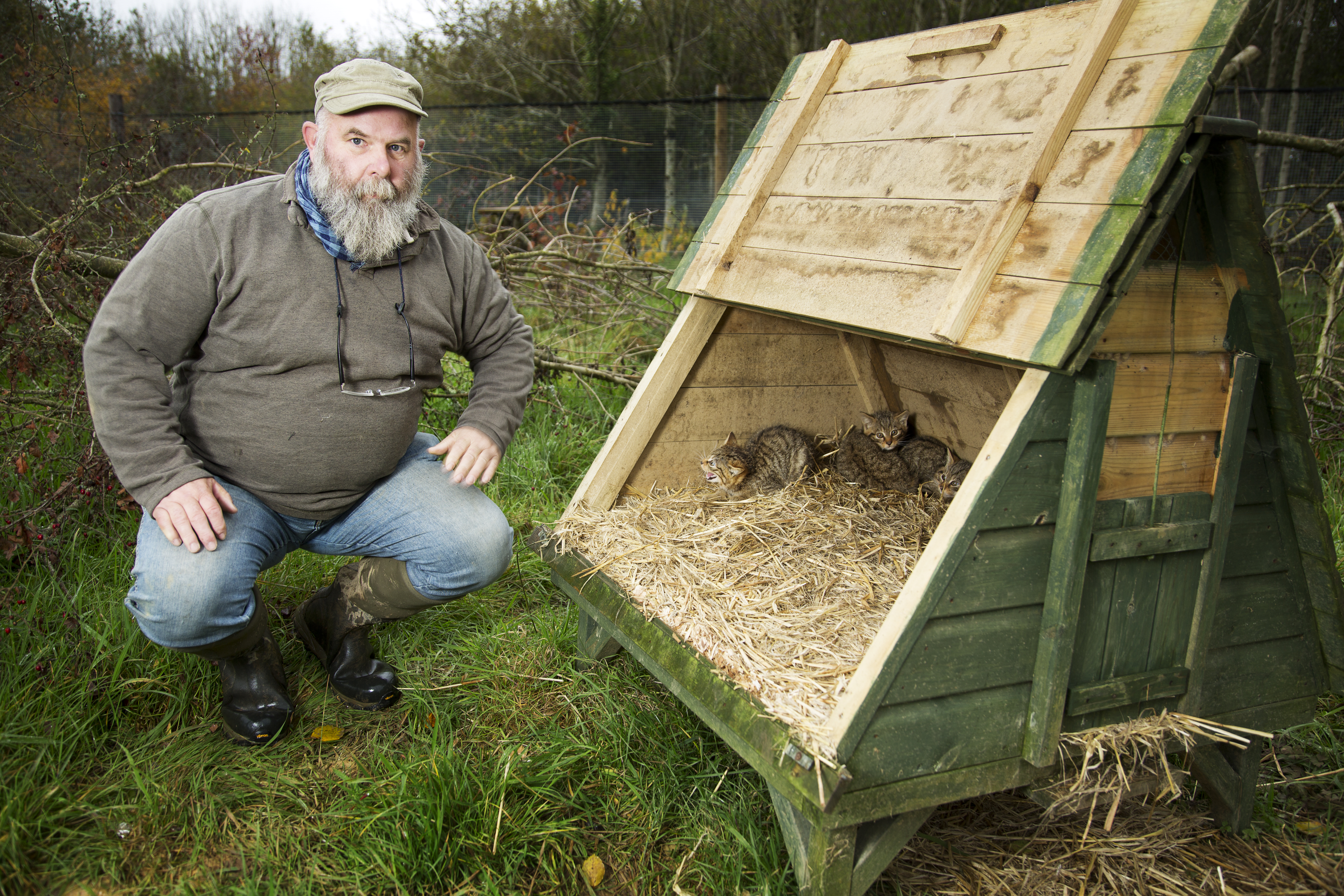 Derek Gow with some of the wildcats he plans to release into the wild