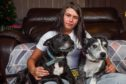 Zoe Letham with her two dogs, Zeus and Saint. Her family had another dog, Angel, which went missing a year ago, which they think could have been stolen