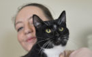 Woody the cat, with owner Stephanie Wood