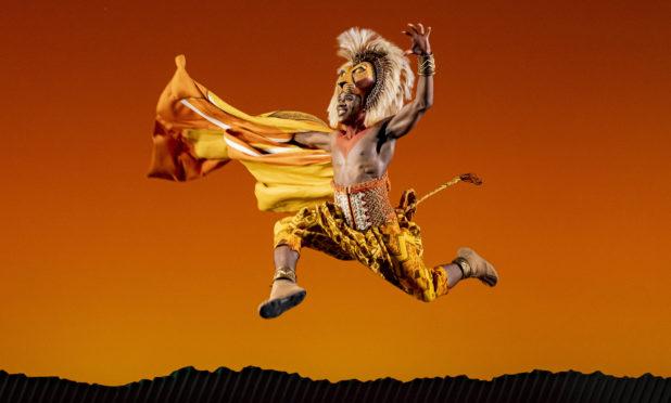 Dashaun Young as Simba