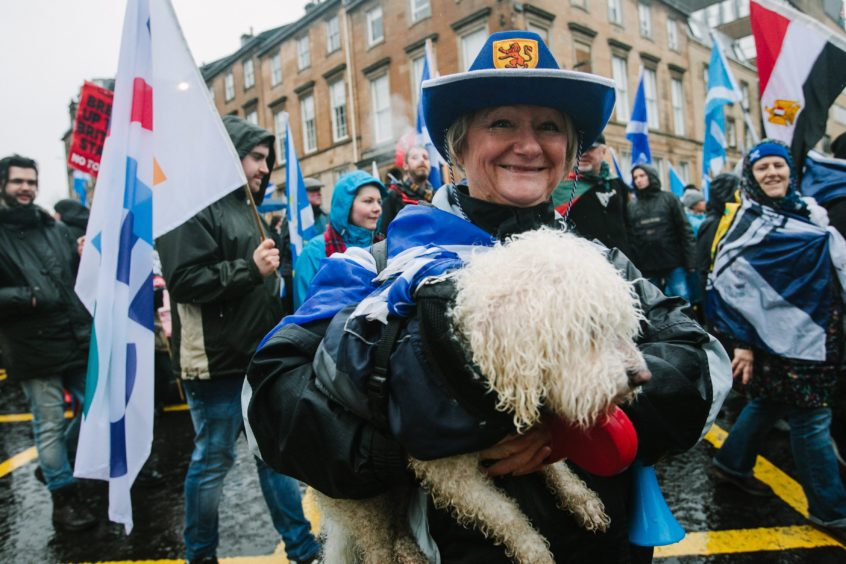 There were plenty of canine companions on the march