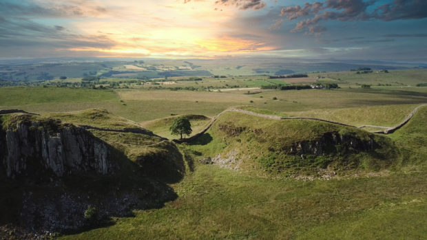 Sycamore gap in Hadrian's Wall