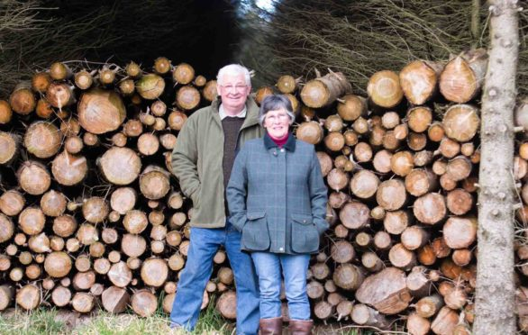 Roger Shipley and Jane Obank with the logs used to power their eco-friendly home