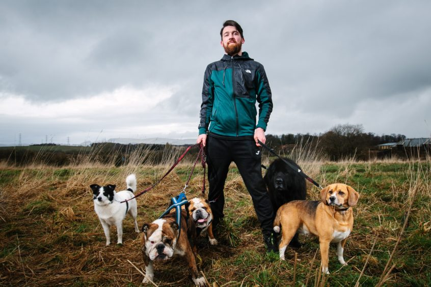 Mark with the dogs