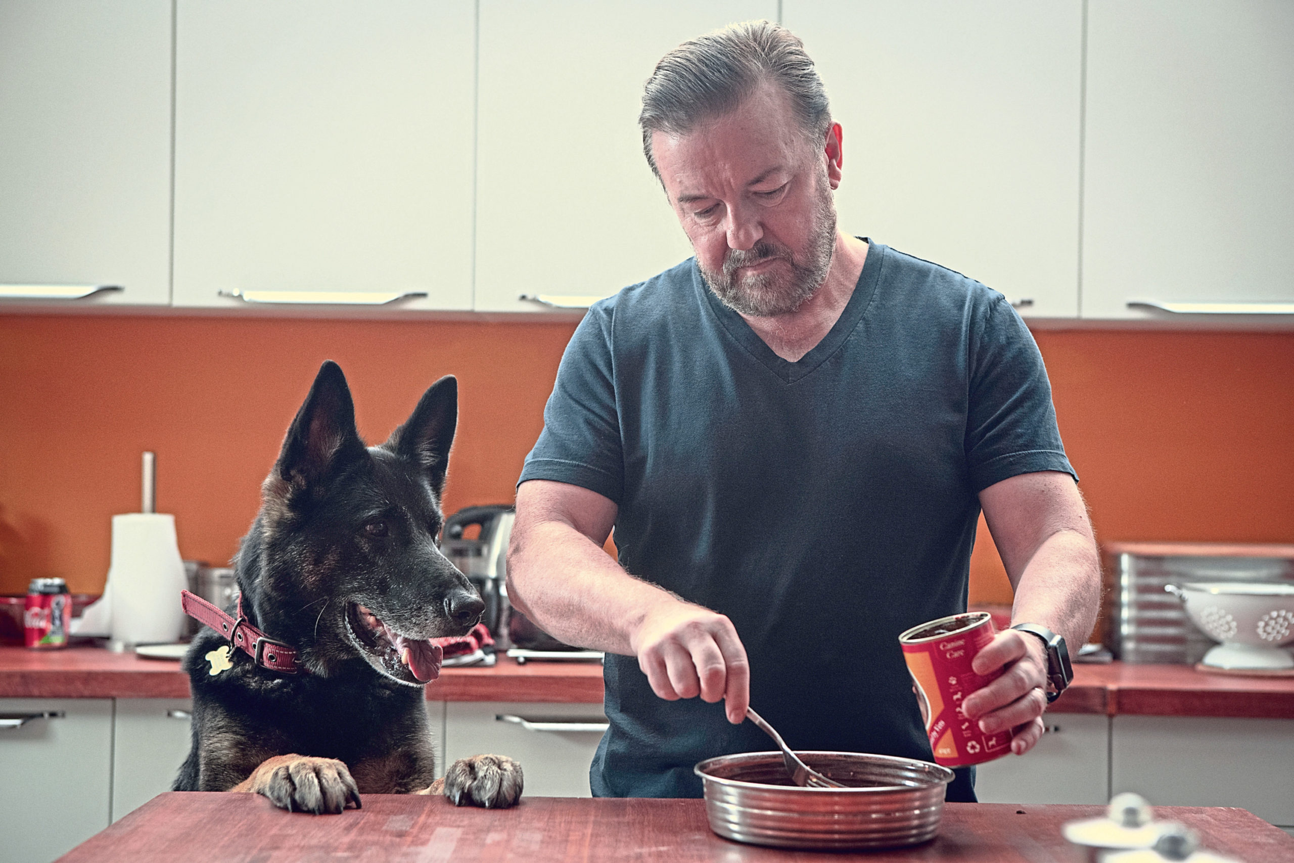 Ricky Gervais as widower Tony with beloved German Shepherd Brandy in After Life season two